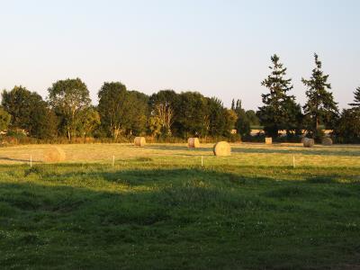 Photo 8 du domaine